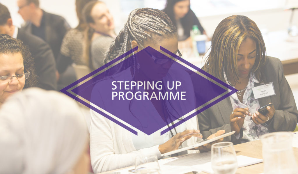 Stepping Up Programme
